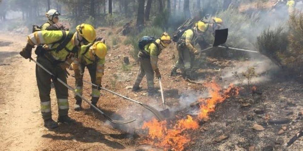 extinguido-incendio-forestal-de-huelva-despues-de-quemar-mas-de-12-000-hectareas-españa-aliadoinformativo.com