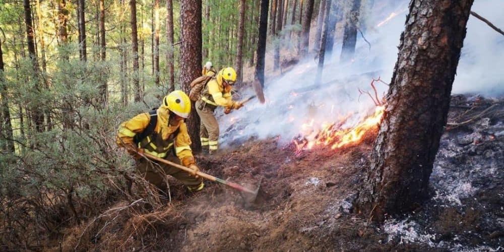 Extinguido incendio forestal de Huelva después de quemar más de 12.000 hectáreas